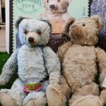 An image of two Merrythought bears that are on display at Shrewsbury Museum and Art Gallery as part of the Bears exhibition.