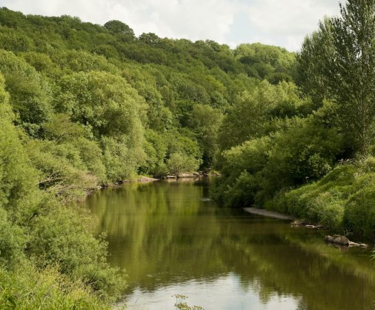 An image of the River Severn sat in the lush Severn Valley running through Severn Valley Country Park. The Park will be holding a Volunteer Historians event to as part of the recruitment for people to work on the Severn Valley Living in the Landscape heritage research project.