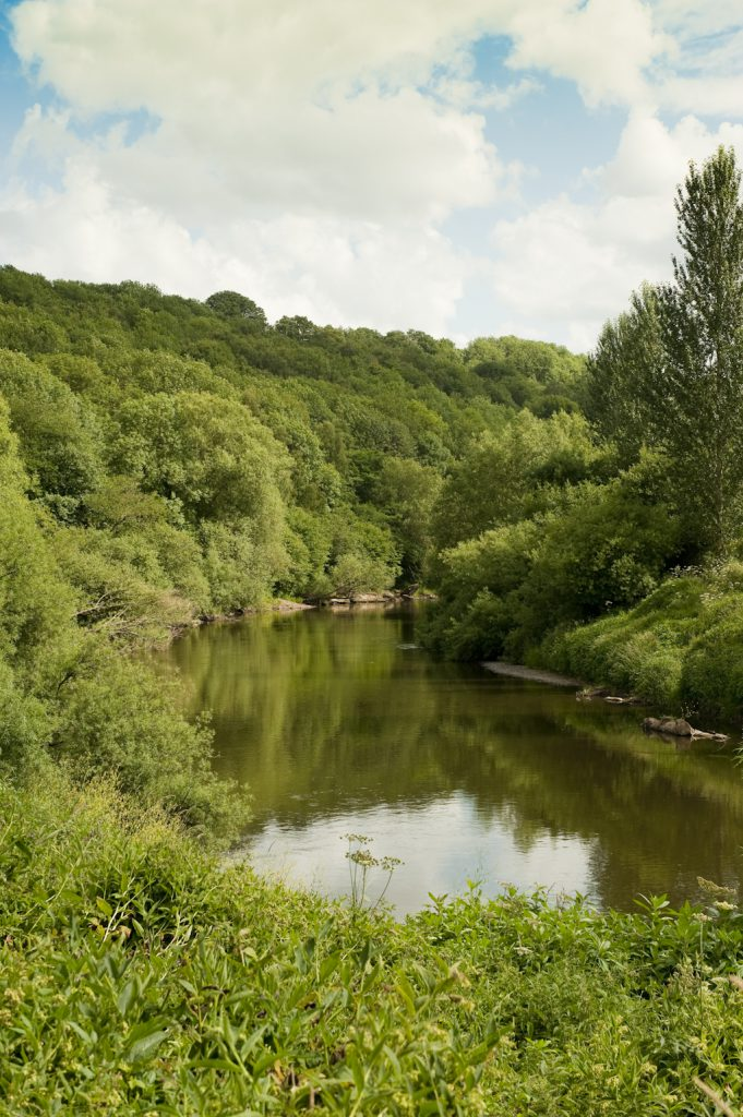 An image of the River Severn sat in the lush Severn Valley running through Severn Valley Country Park. The Park is going to be receiving a children's play area as part of the Unlocking the Severn project.