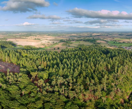 An image of an aerial photo of Nesscliffe Hillfort which dates to 500BC.