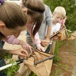 Severn Valley Country Park summer fun