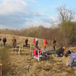 An image of volunteer groups tree planting with Shropshire Council's outdoor partnerships team.